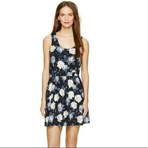 Aritzia Talula Roppongi Foral Dress